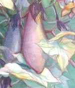 俳句と水彩画
