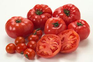 トマトと野菜の栄養学