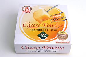 チーズフォンデュ 濃厚チーズの味わい