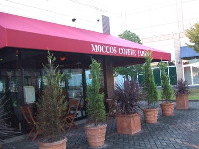 moccos1.jpg