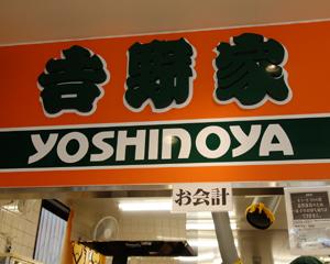 yosinoyamugi2.jpg