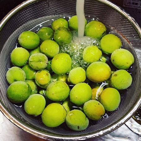 梅しごと水洗い.jpg
