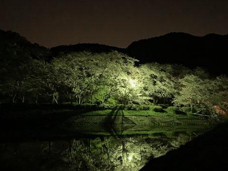 立岡自然公園2.jpg