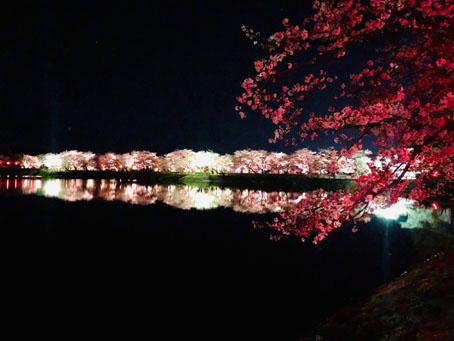 立岡自然公園4.jpg