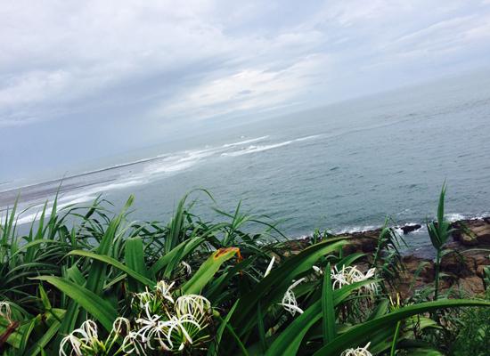 シャンシャン 海.jpg