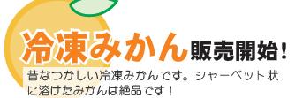 20160708 カットみかん.jpg