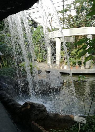 20180303_植物園温室01.jpg