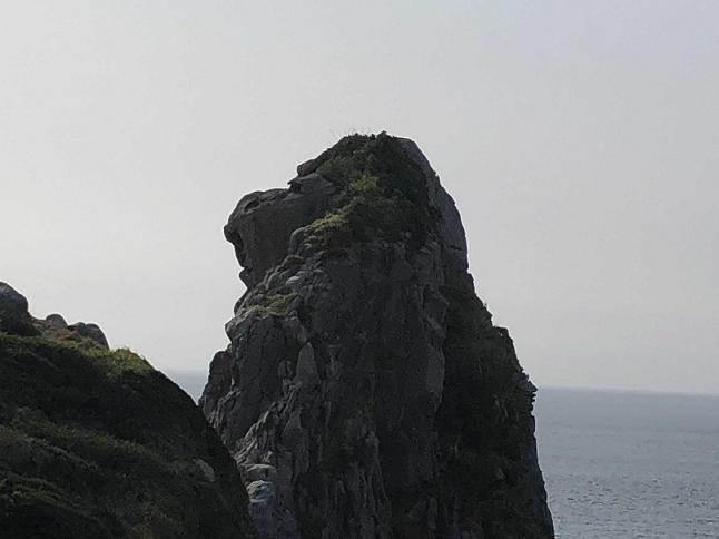 IMG_1002猿岩小.JPG