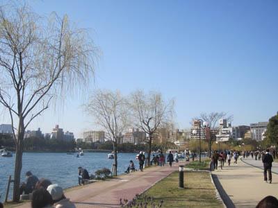 公園風景.JPG