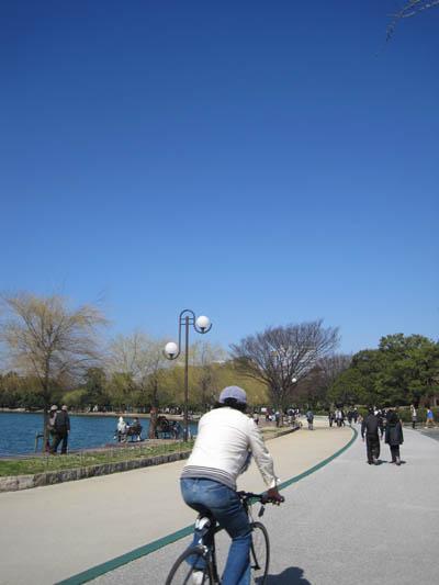 散歩日和.JPG